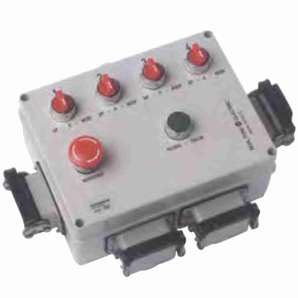 Pannello Pulsantiera Di Controllo Per Due Paranchi Elettrici Monofase